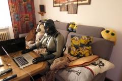 Katzentatze am PC 2
