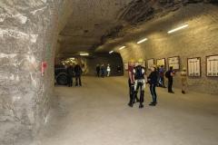 Ausstellung und Museum