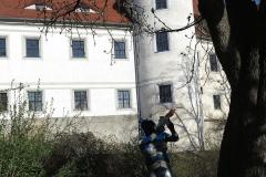 vor dem Schloss Nossen