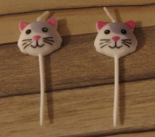 kleine Katzenkerzchen