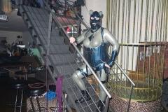 Katze auf der Treppe