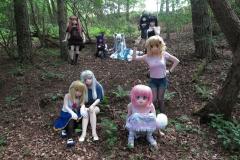 Gesamtbild im Wald