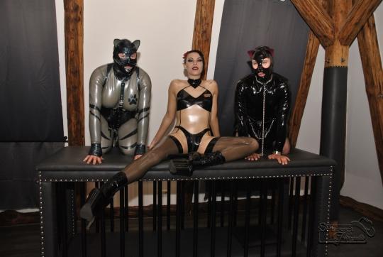 Katzentatze mit Sola Lupa und Rubbelina