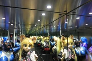 Miyuci und Katzentatze im Fahrstuhl