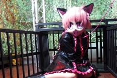 Ichigo-Maid beim Spielen