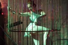 die Poledance-Tänzerin im Käfig