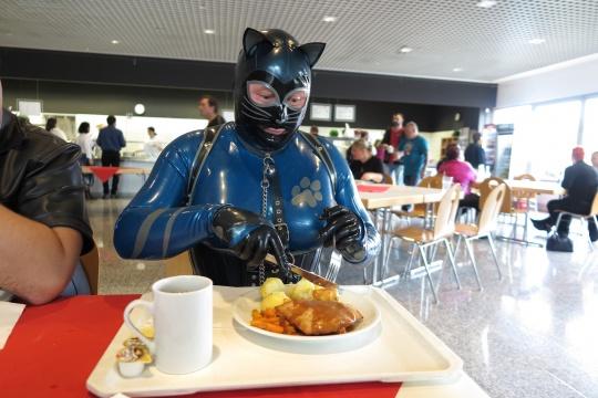 auch eine Katze muss was essen