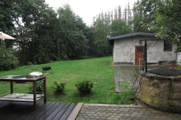 Blick in den verregnten Garten