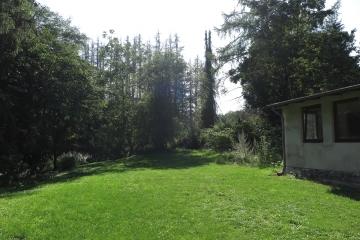 Garten Richtung Wald