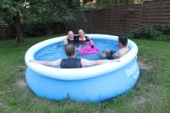 4 Nixen im Pool
